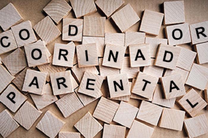letras Coordinador Parental