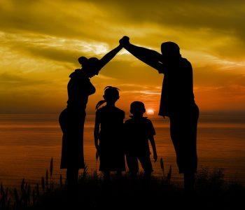 Contenido obligatorio del Plan de Parentalidad