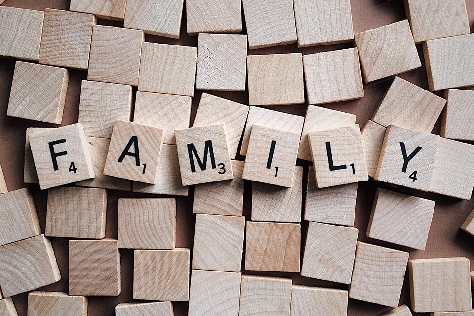 Family: El Coordinador Parental en España para ayudar a las familias.